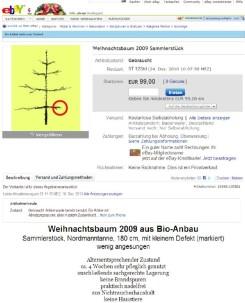 weihnachtsbaum_2009