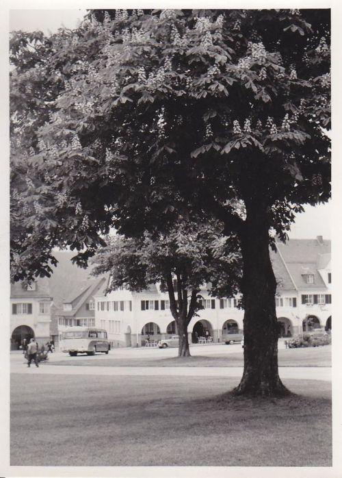 Freudenstadt11