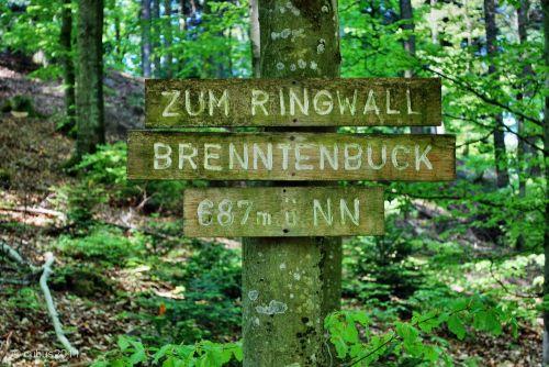 Ambrenntenbuck12